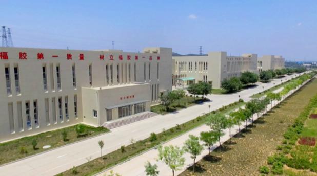 协会副会长、福胶集团董事长杨福安荣获全国优秀企业家荣誉称号插图(3)