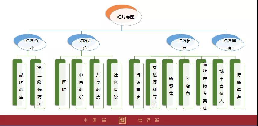 福胶集团国际战略版图再添新军 澳门分公司中国福集团正式挂牌插图(2)