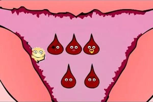 据说这五大人群容易贫血,快看看其中有你吗?插图(3)