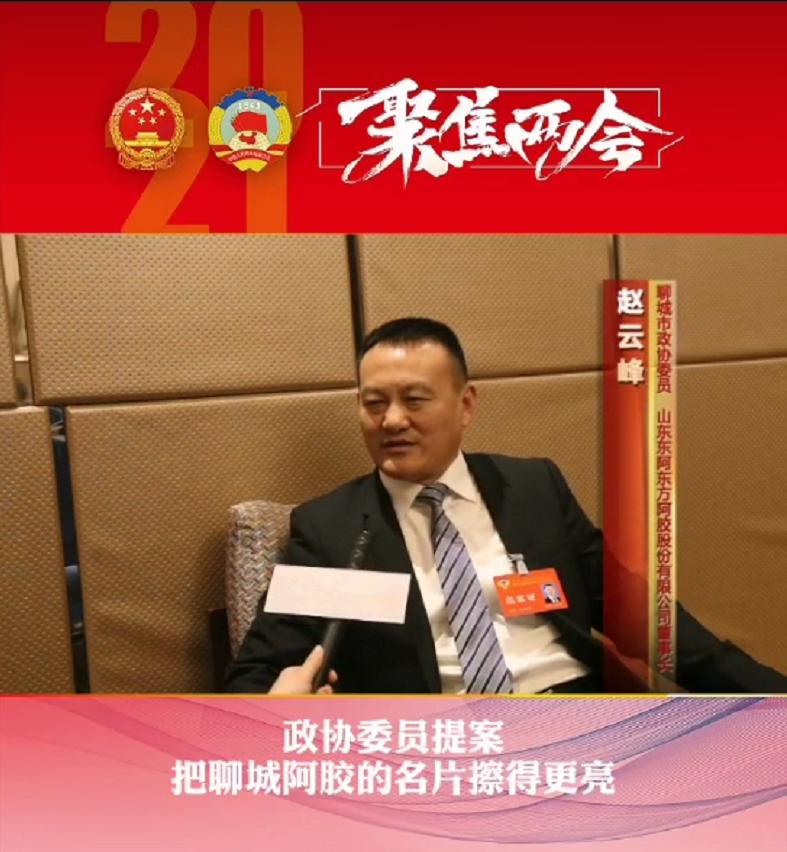 聊城市政协委员赵云峰:把阿胶的名片擦得更亮插图