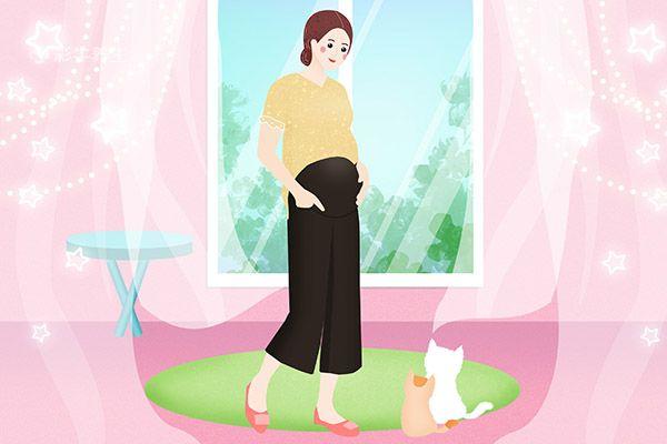 怎么分辨例假推迟和怀孕插图(2)
