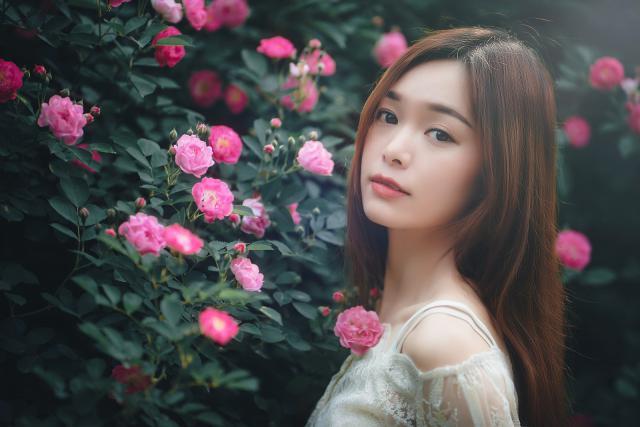 摄图网_501298729_ 蔷薇花与美女(企业商用).jpg