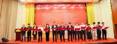 宏济堂阿胶代表行业做质量与安全联合宣言