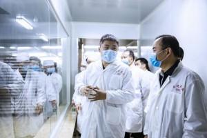 湖南衡阳市委副书记、代市长朱健调研东健药业