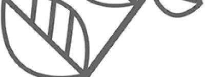 阿胶偏方验方:黄连丸十个