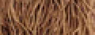 阿胶中药方剂:天紫红女金胶囊