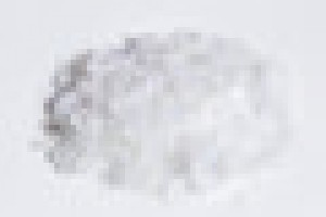 阿胶中药方剂:致康胶囊