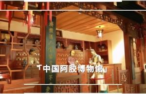 中国阿胶博物馆:国之精粹,药中瑰宝,一块流传了3000年的滋补圣品