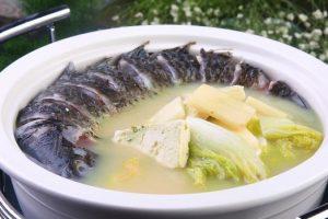 阿胶的做法分享-阿胶食谱一:阿胶鲤鱼汤图片